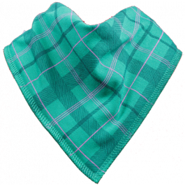 Tartan Army Single Dribble Bib